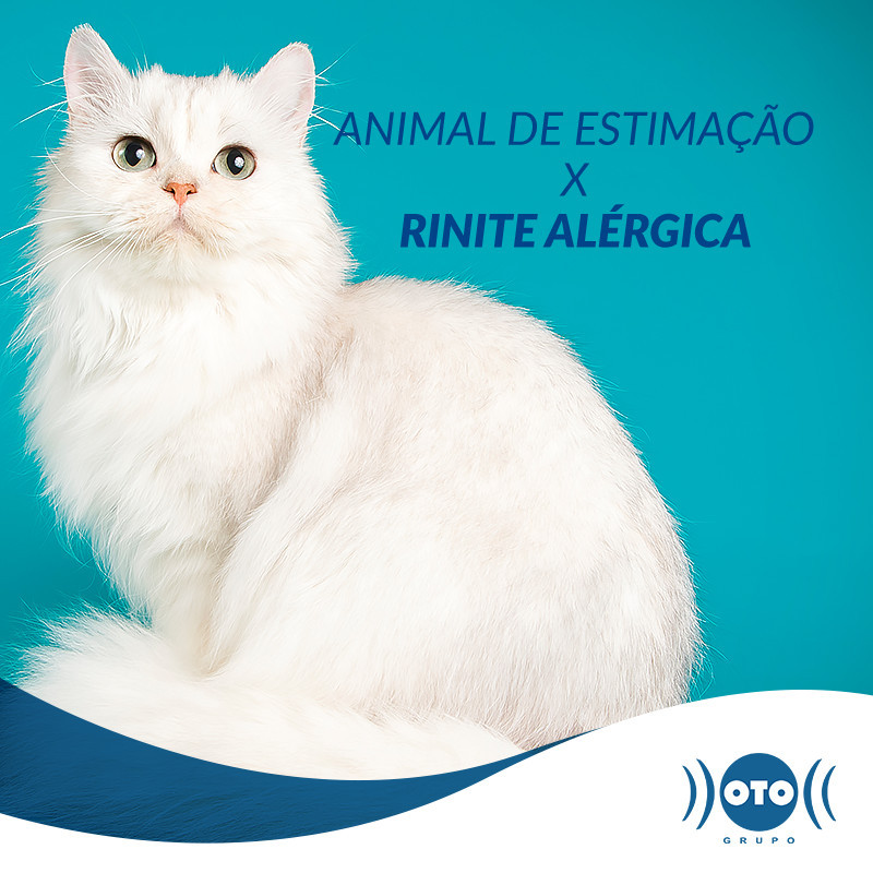 ANIMAL DE ESTIMAÇÃO X RINITE ALÉRGICA